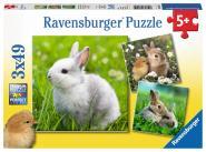Ravensburger Niedliche Häschen, 3 X 49 Teile 080410
