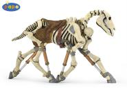 Papo Skelett Pferd 38993