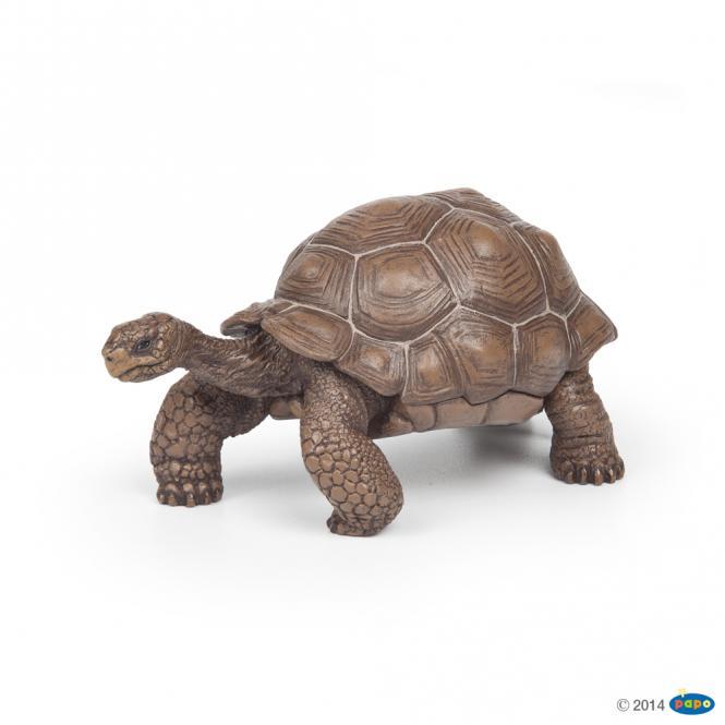 Papo Galápagos-Riesenschildkröte 50161